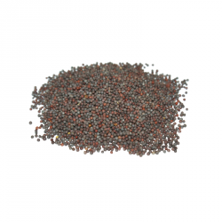 Miraherba - organic mustard seeds black whole - 100g