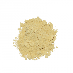 Miraherba - organic ginger-ground - 50g