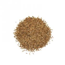 Miraherba - Bio di semi di Cumino - 50g