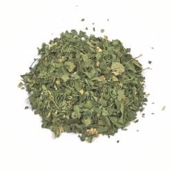Miraherba ecológico de las hojas de moringa Té - 50g