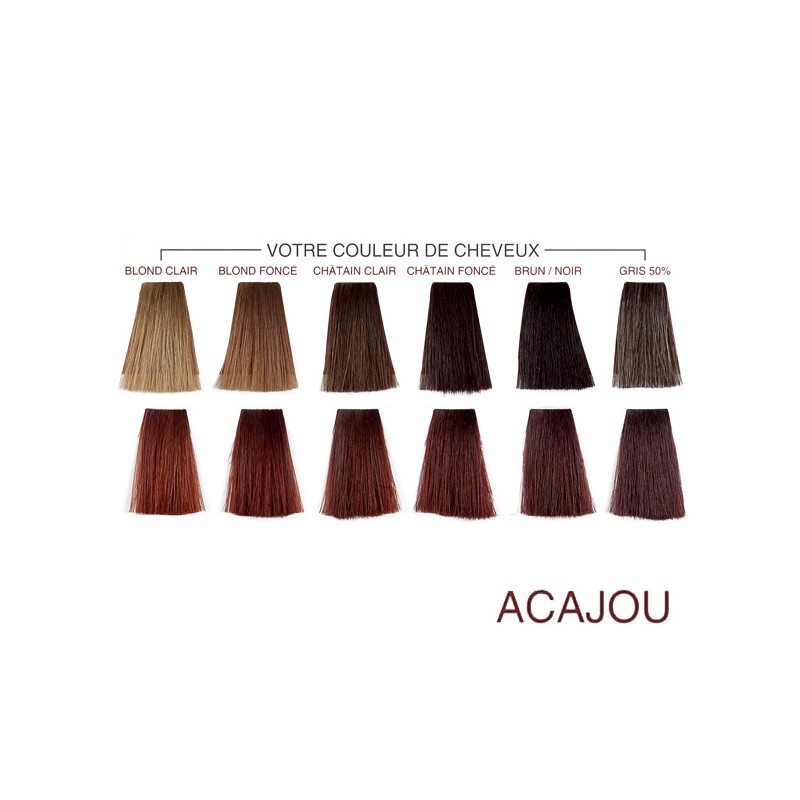 Henna Color Henna Paste Acajou Mahogany 90ml