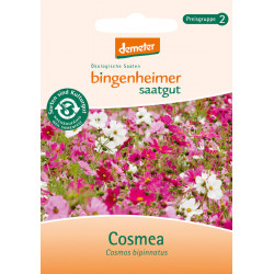 Graines de Bingenheim - Cosmea