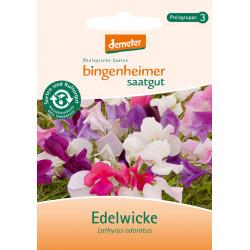 Bingenheimer Seed - Sweet Pea