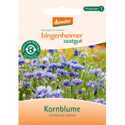 Bingenheimer Saatgut Cornflower