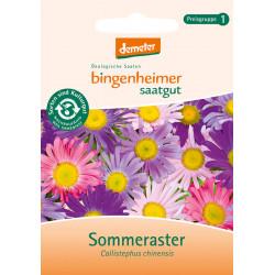 Bingenheimer Saatgut - Sommeraster