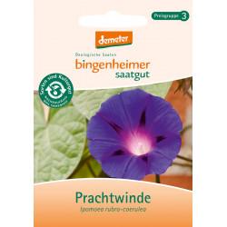 Bingenheimer Saatgut - Prachtwinde