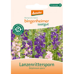 Bingenheimer Semi - Lanzenrittersporn