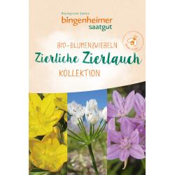 Bingenheimer Saatgut - Zierlicher Zierlauch Blumenzwiebeln - 9st