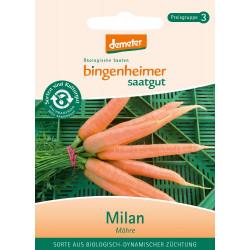 Bingenheimer Saatgut -  Karotten Milan