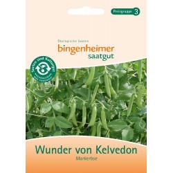 Bingenheimer saatgut - pea miracle of Kelvedon - 35g
