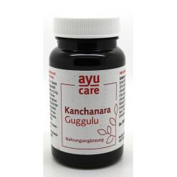 Ayu care - Organic Kanchanara guggulu - 60g
