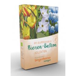 Bingenheimer Saatgut - Bienen Balkon - Kollektion - Blumenzwiebeln - 9st