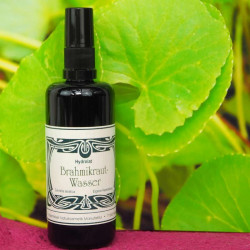 Maienfelser - Eau d'herbes brahmiques - 100 ml