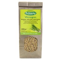 Raiponce - herbe de blé...
