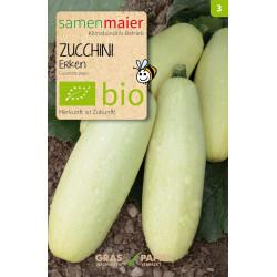 Samen Maier - Bio Zucchini Erken - 1Tüte