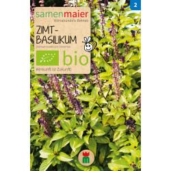Samen Maier - Bio Zimtbasilikum - 1Tüte