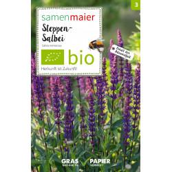 Samen Maier - Bio Steppen-Salbei - 1Tüte