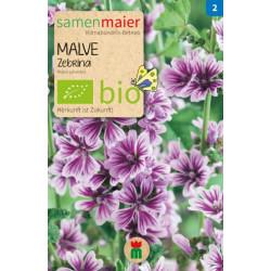 Samen Maier - Bio Malve Zebrina - 1Tüte