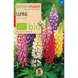 Samen Maier - Bio Lupine - 1Tüte