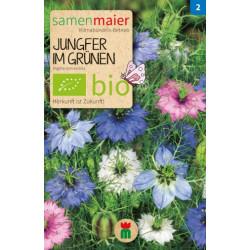 Samen Maier - Bio Jungfer im Grünen - 1Tüte