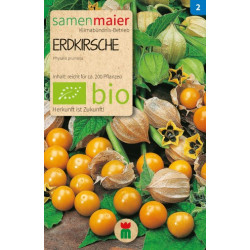Samen Maier - Bio Erdkirsche Phyalis - 1Tüte