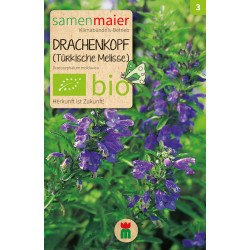 Samen Maier - Bio Melisse Drachenkopf - 1Tüte