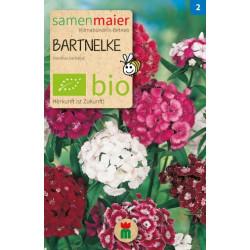 Maier Seeds - Moutarde bio - 1 sachet
