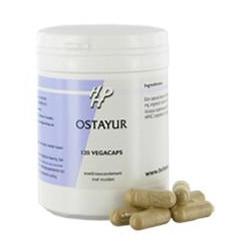 Holisan - Ostayur - 120 gélules