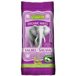 Rapunzel - Organic Mints Sage - 100g