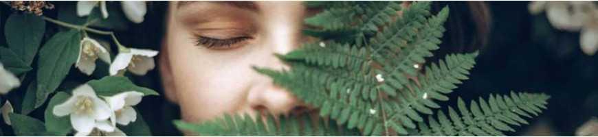 Kosmetik: Natürliche Pflegeprodukte und reichhaltige Kuren für Haut und Haar in Bio-Qualität