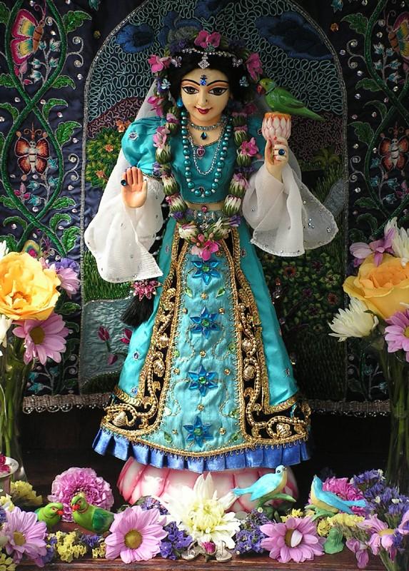 Tulasi devi die Göttin des heiligen Basilikum