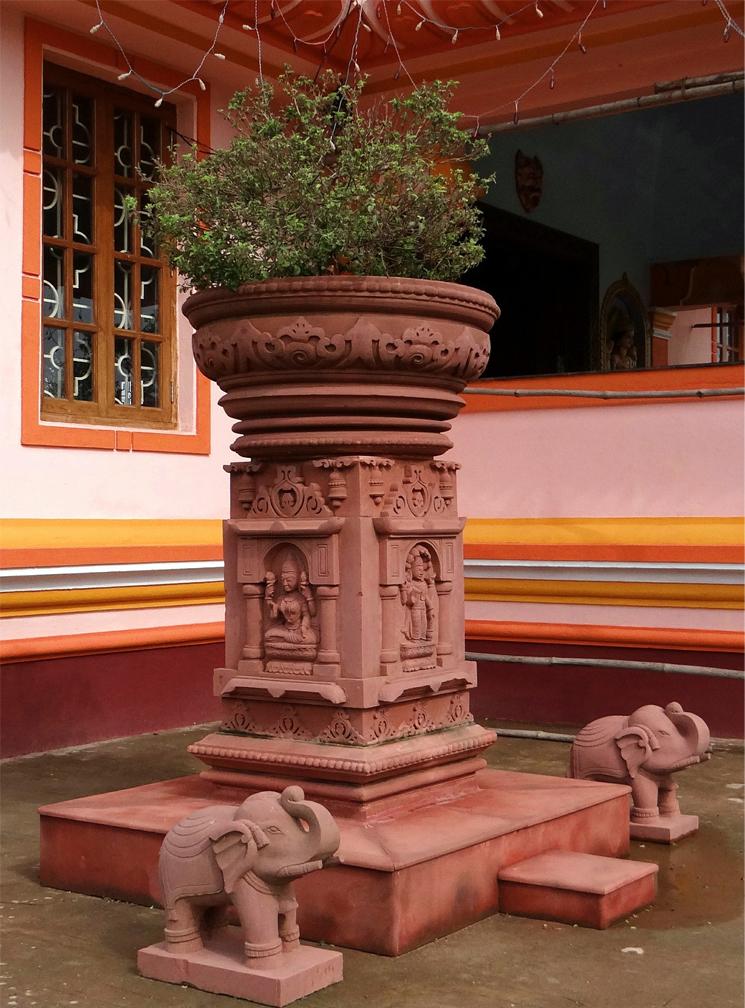 heiliges Basilikum Tulsi in einem Tempel