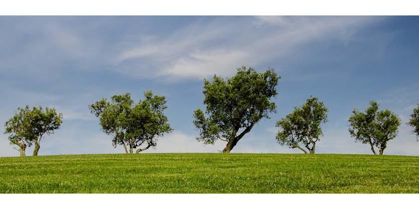 Nachhaltigkeit ist für uns kein Lippenbekenntnis
