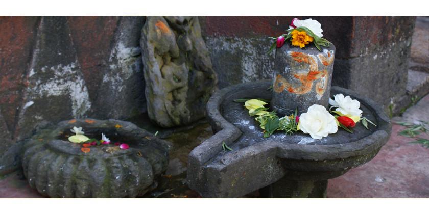 Was hilft bei Erektionsstörungen? Natürliche Potenzmittel aus dem Ayurveda